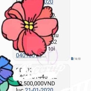 z2468951450321_20637aca5a6511cc2fb26d0d8e04f9d3